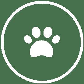Animal & Supplements icon